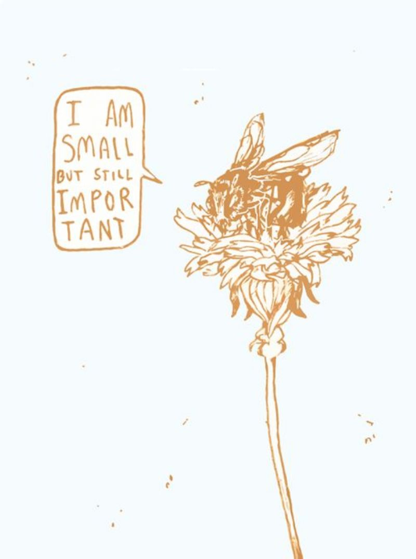 Small but still important